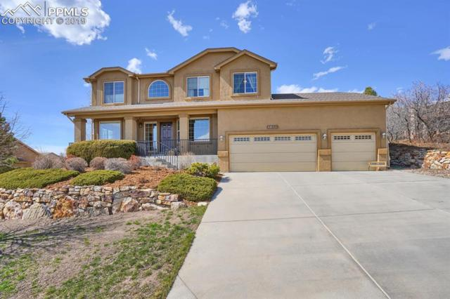 1860 Bridle Oaks Lane, Colorado Springs, CO 80921 (#4382588) :: Tommy Daly Home Team
