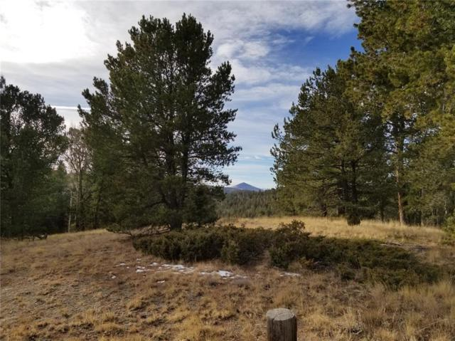 623 Rocky Mountain View Road, Divide, CO 80814 (#4382781) :: 8z Real Estate