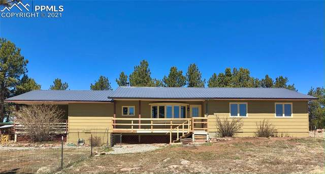 5189 County Road 71, Guffey, CO 80820 (#4383226) :: The Gold Medal Team with RE/MAX Properties, Inc