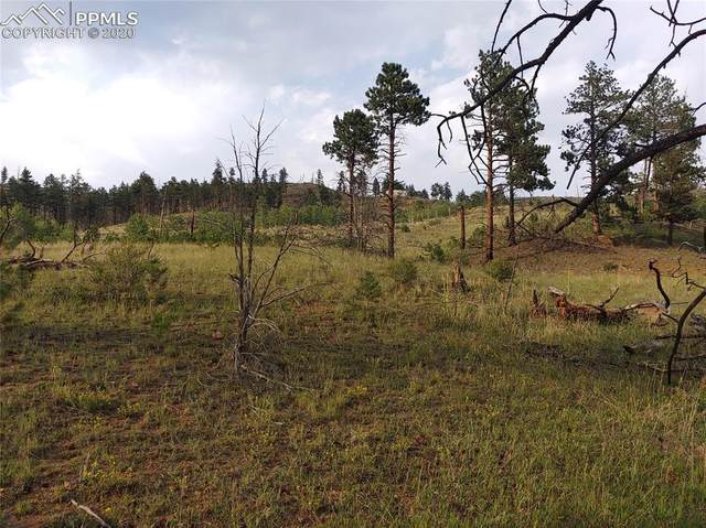 13990 S Highway 67 Highway, Sedalia, CO 80135 (#4383339) :: 8z Real Estate
