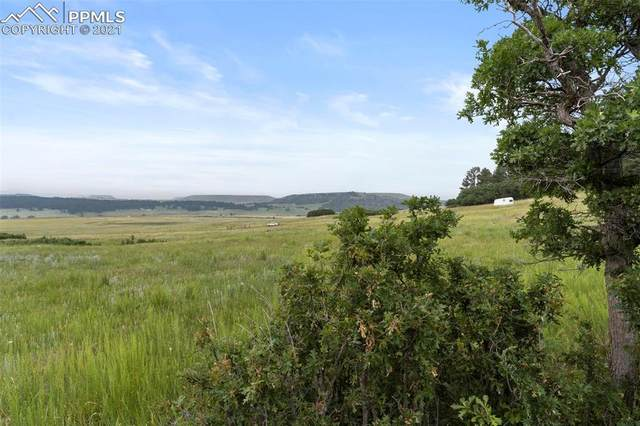 14254 S Highway 83 Highway, Larkspur, CO 80118 (#4388783) :: Action Team Realty