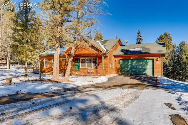 385 Spring Valley Drive, Divide, CO 80814 (#4389218) :: Tommy Daly Home Team