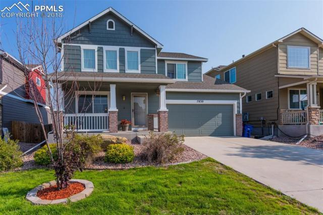 7830 Guinness Way, Colorado Springs, CO 80951 (#4390768) :: Jason Daniels & Associates at RE/MAX Millennium