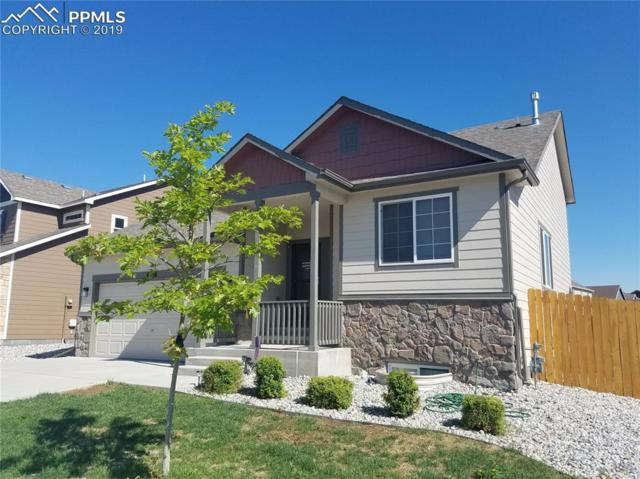 6416 Dancing Star Way, Colorado Springs, CO 80911 (#4391691) :: Tommy Daly Home Team