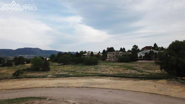 14344 Spyglass Hill Place, Colorado Springs, CO 80921 (#4393769) :: Action Team Realty