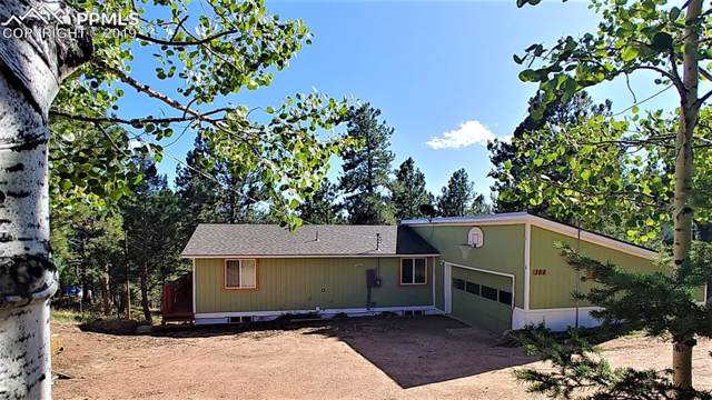 364 Gardenia Road, Woodland Park, CO 80863 (#4399329) :: CC Signature Group