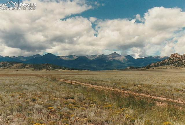 Roundup Road, Westcliffe, CO 81252 (#4400746) :: Action Team Realty