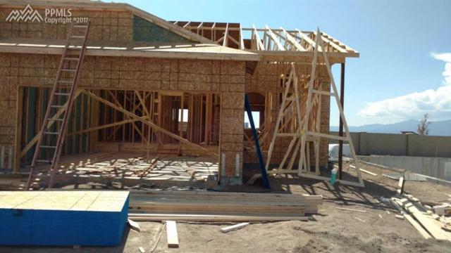 11455 Rill Point, Colorado Springs, CO 80921 (#4403203) :: 8z Real Estate