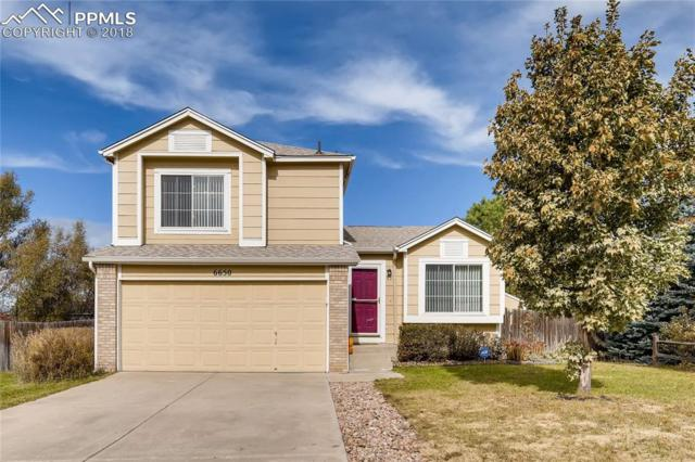 6650 Mustang Pony Way, Colorado Springs, CO 80922 (#4405818) :: 8z Real Estate