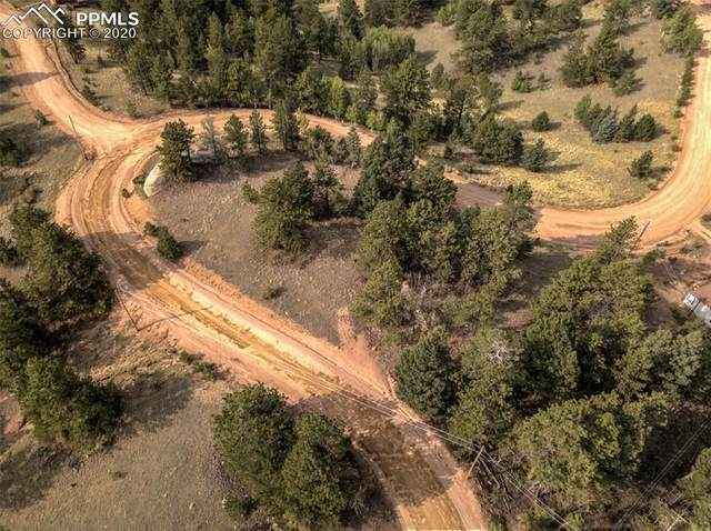 435 May Queen Drive, Cripple Creek, CO 80813 (#4406450) :: The Daniels Team