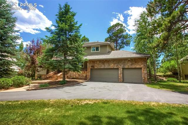 31251 Island Drive, Evergreen, CO 80439 (#4407259) :: CC Signature Group