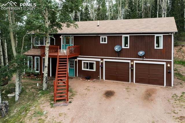 4985 County Road 8, Victor, CO 80860 (#4412202) :: Tommy Daly Home Team