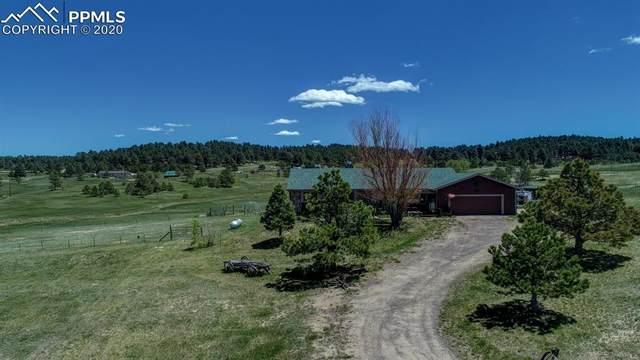 19365 Green Sage Drive, Colorado Springs, CO 80908 (#4414851) :: CC Signature Group