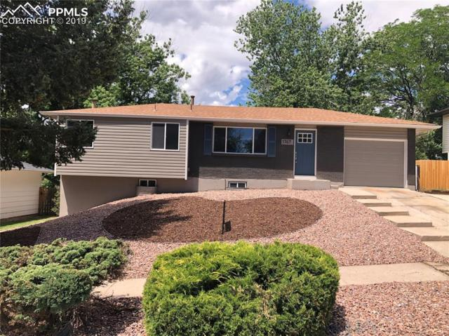 1767 Sawyer Way, Colorado Springs, CO 80915 (#4428989) :: Colorado Home Finder Realty