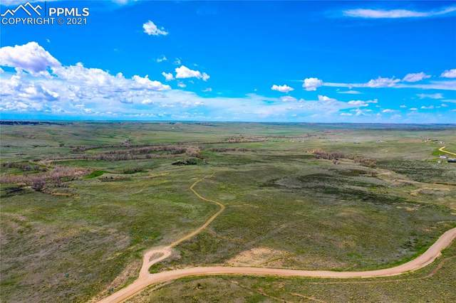 40472-2 County Road 85 Road, Deer Trail, CO 80105 (#4434267) :: Action Team Realty