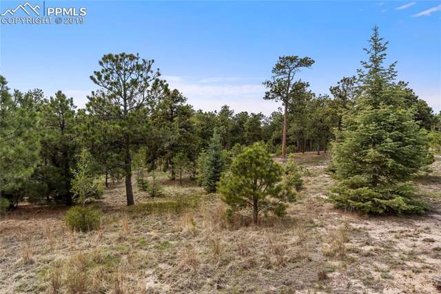 7165 Mcshane Road, Colorado Springs, CO 80908 (#4441563) :: Perfect Properties powered by HomeTrackR