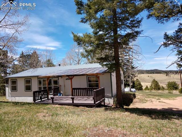 1060 Cantiberry Road, Divide, CO 80814 (#4450627) :: The Treasure Davis Team
