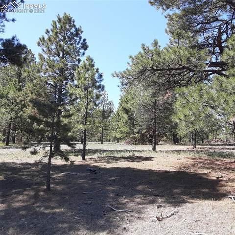 11241 Mosey Trail, Colorado Springs, CO 80908 (#4452718) :: Dream Big Home Team | Keller Williams