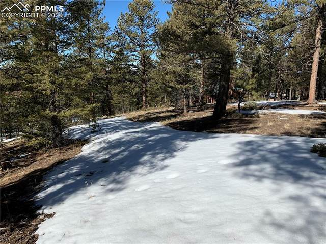 485 Gerka Lane, Florissant, CO 80816 (#4459267) :: Action Team Realty