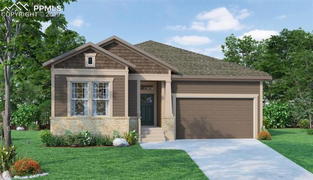 6511 Twin Falls Court, Colorado Springs, CO 80924 (#4461580) :: 8z Real Estate