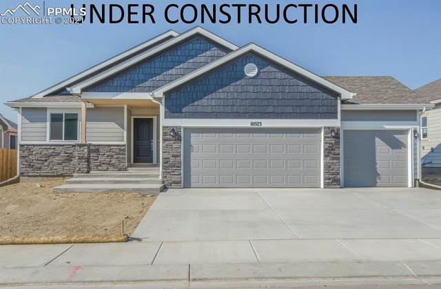 5173 Yari Drive, Colorado Springs, CO 80924 (#4462545) :: 8z Real Estate