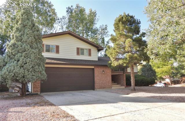 5040 Escapardo Way, Colorado Springs, CO 80917 (#4469187) :: 8z Real Estate
