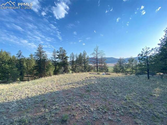 44 Vista Circle, Florissant, CO 80816 (#4470320) :: 8z Real Estate