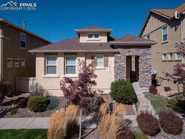 5672 Flicka Drive, Colorado Springs, CO 80924 (#4471103) :: Action Team Realty