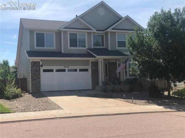 8356 Brook Valley Drive, Fountain, CO 80817 (#4474653) :: Tommy Daly Home Team