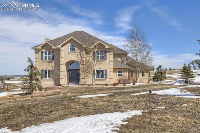 20135 Sedgemere Road, Monument, CO 80132 (#4478595) :: Perfect Properties powered by HomeTrackR