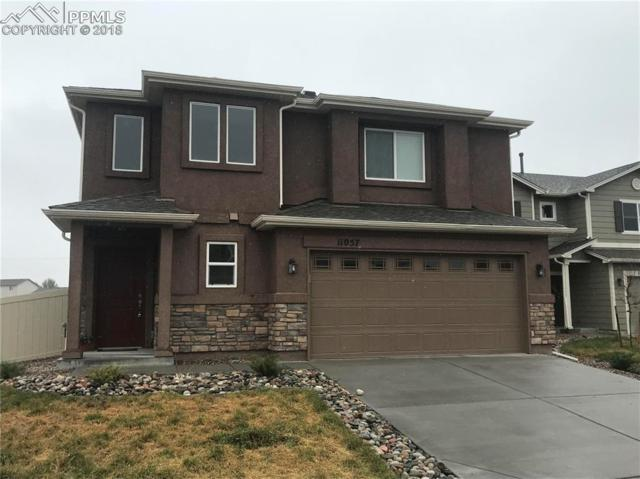 11057 Buckhead Place, Fountain, CO 80817 (#4479304) :: Jason Daniels & Associates at RE/MAX Millennium