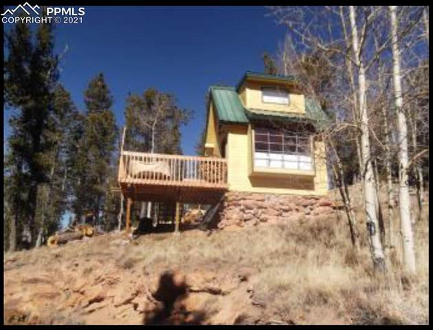 924 Crown Point Circle, Cripple Creek, CO 80813 (#4481206) :: Tommy Daly Home Team