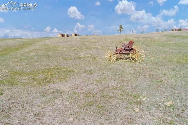 17845 Highland Estates Drive, Colorado Springs, CO 80908 (#4488205) :: The Treasure Davis Team | eXp Realty