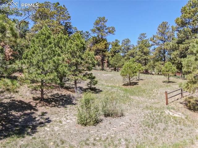 17320 Prospector Drive, Peyton, CO 80831 (#4490571) :: Fisk Team, eXp Realty