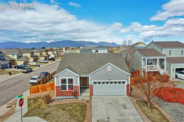 7972 Brocket Lane, Fountain, CO 80817 (#4491791) :: Tommy Daly Home Team