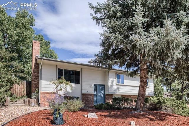 350 E Rockrimmon Boulevard, Colorado Springs, CO 80919 (#4492807) :: 8z Real Estate
