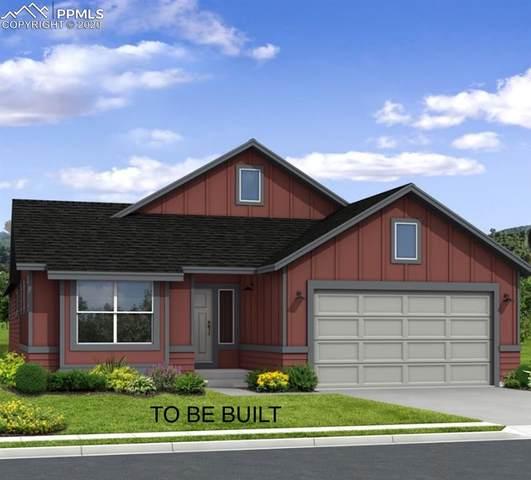 6628 Cumbre Vista Way, Colorado Springs, CO 80924 (#4494613) :: The Daniels Team