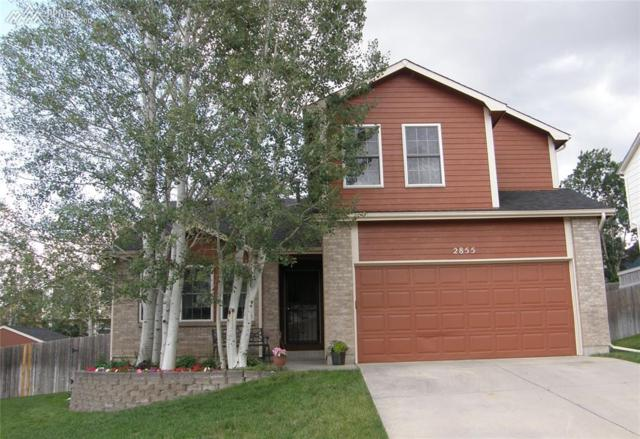 2855 Warrenton Way, Colorado Springs, CO 80922 (#4497902) :: RE/MAX Advantage