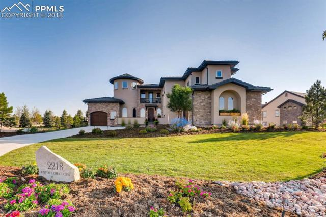 2218 Coyote Crest View, Colorado Springs, CO 80921 (#4499233) :: The Daniels Team
