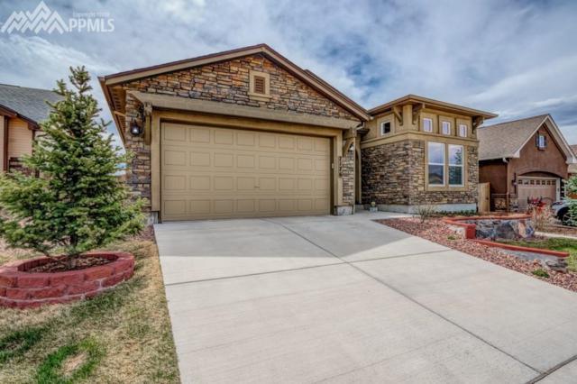 7176 Mustang Rim Drive, Colorado Springs, CO 80923 (#4502880) :: 8z Real Estate