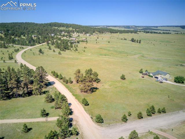 21360 Warriors Path Drive, Peyton, CO 80831 (#4504164) :: Action Team Realty
