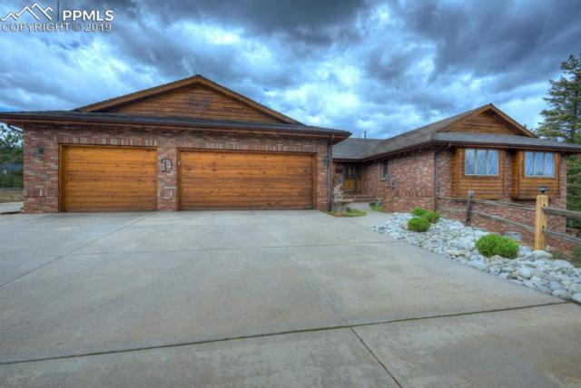 8229 Red Rock Place, Larkspur, CO 80118 (#4505607) :: HomePopper