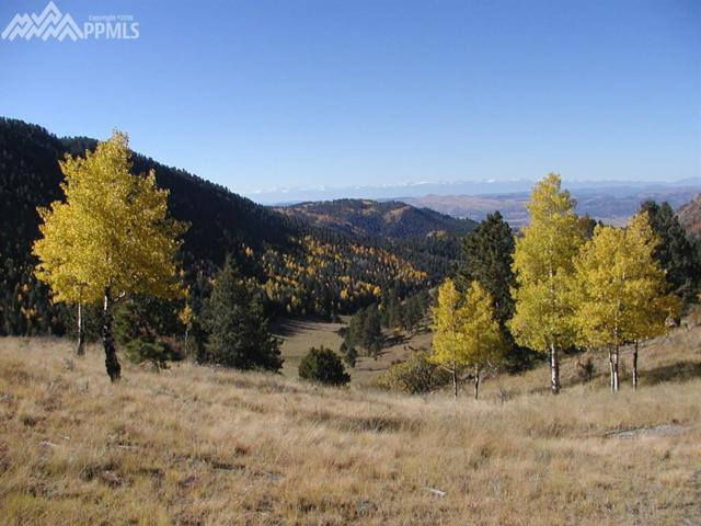 Unknown County 1 Road, Cripple Creek, CO 80813 (#4507108) :: The Peak Properties Group