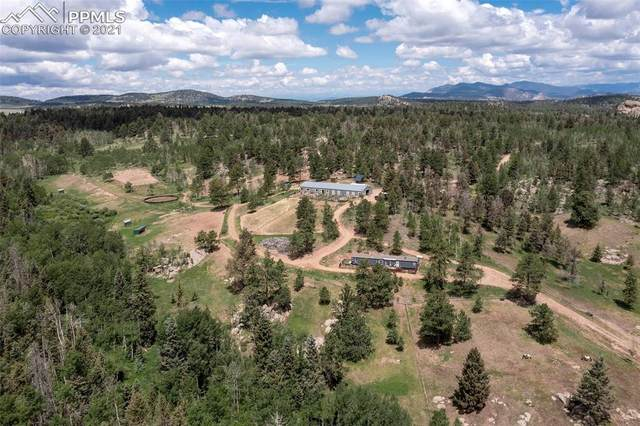 789 Crested Butte Drive, Guffey, CO 80820 (#4509985) :: Compass Colorado Realty
