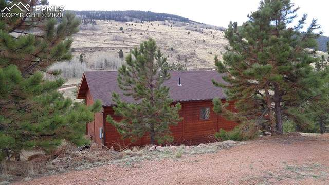 198 Tuscanora Drive, Cripple Creek, CO 80813 (#4516163) :: Action Team Realty
