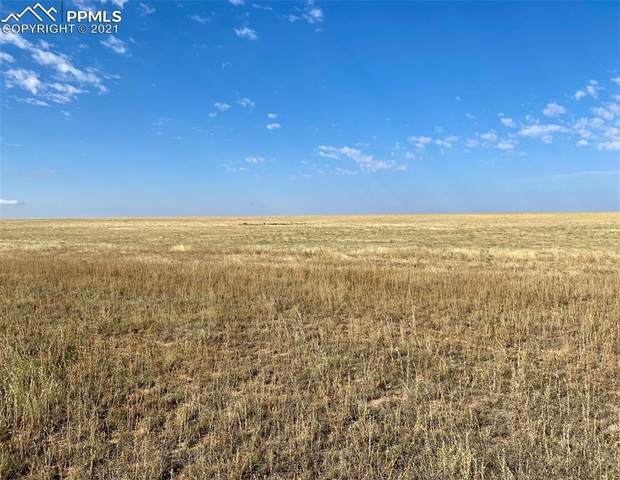 1490 Sengbeil Road, Yoder, CO 80864 (#4517596) :: Action Team Realty