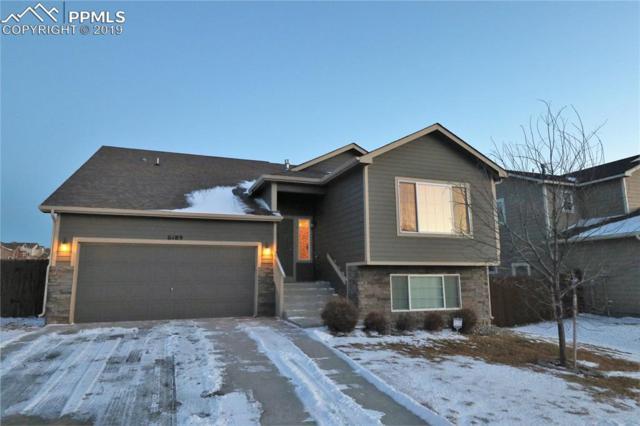 6189 Dancing Moon Way, Colorado Springs, CO 80911 (#4519958) :: 8z Real Estate