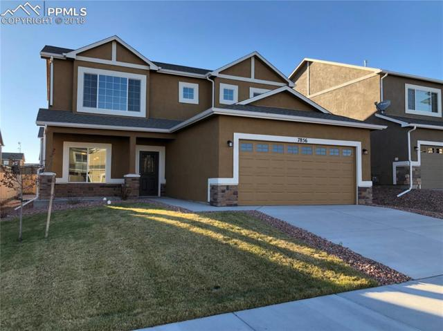 7856 Dry Willow Way, Colorado Springs, CO 80908 (#4522432) :: The Hunstiger Team