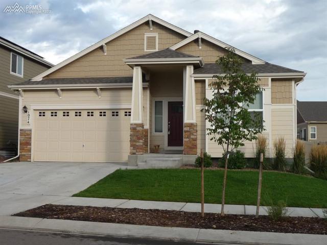 1074 Antrim Loop, Colorado Springs, CO 80910 (#4522922) :: 8z Real Estate