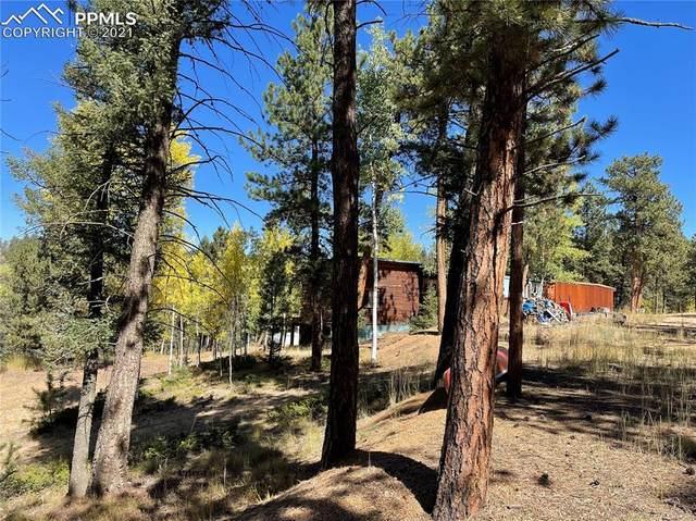 433 Badger Trail, Florissant, CO 80816 (#4525269) :: 8z Real Estate